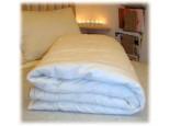Organic Cotton Eco Wool Comforter Folded